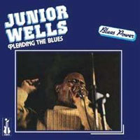 Cover-JuniorWells-Pleading.jpg (xpx)
