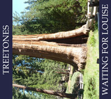 Cover-W4L-Treetones-small.jpg (xpx)